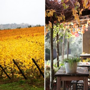 1 southern tuscany travel gallery