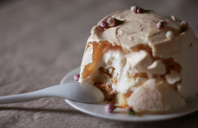 Plum wine Tiramisu Masquerading as a Pavlova
