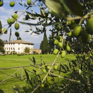 The Art of Eating Well - A Tuscan Getaway this Fall