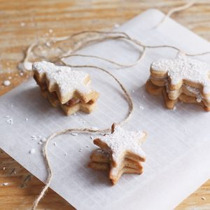 Cinnamon christmas cookies
