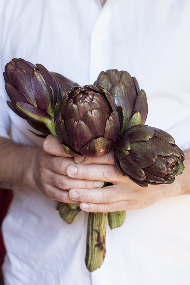 artichokes from Tuscany