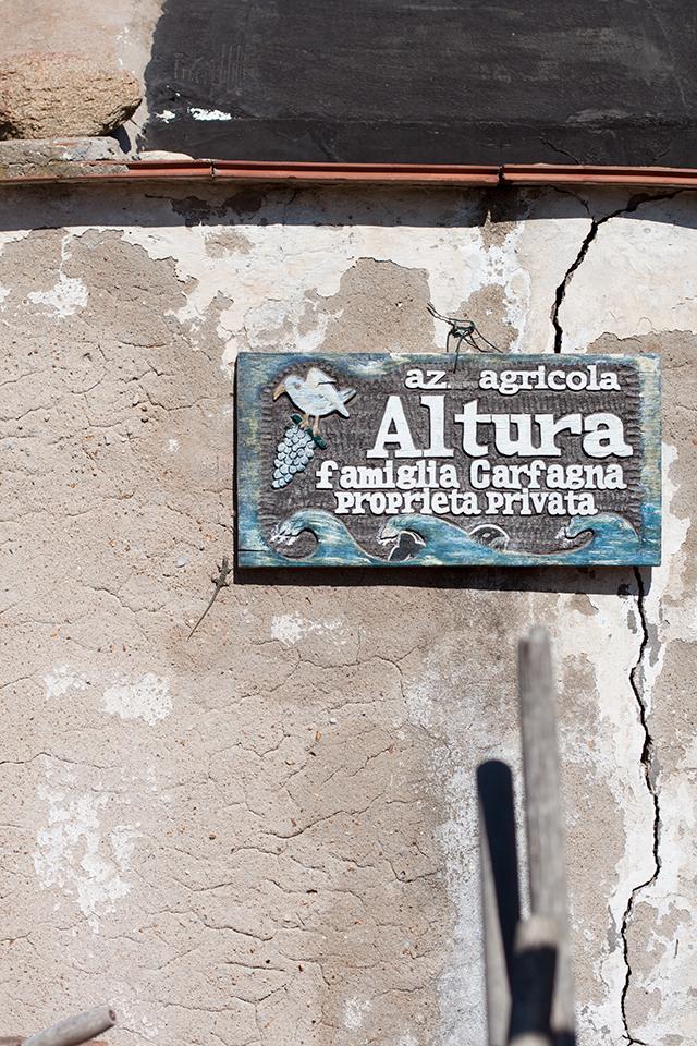 Giglio Altura winery