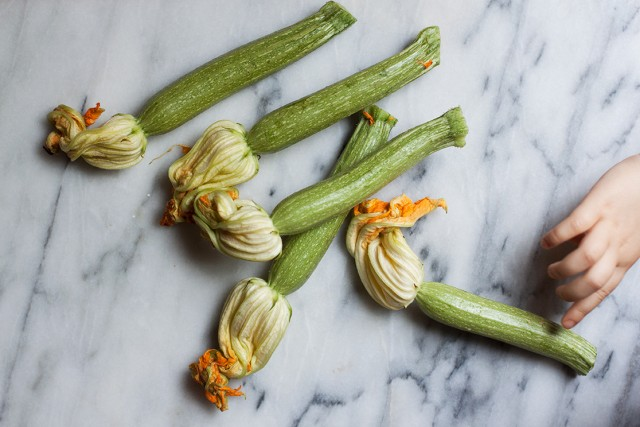 zucchine fiorentine with their flowers