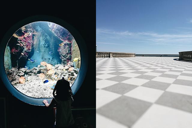 Livorno-acquarium-terrazza-mascagni