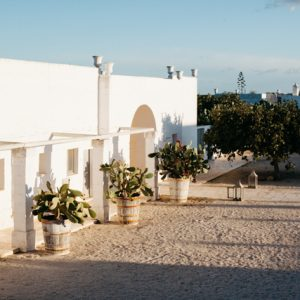 A peek at The Puglia Encounter Workshop, Masseria Potenti
