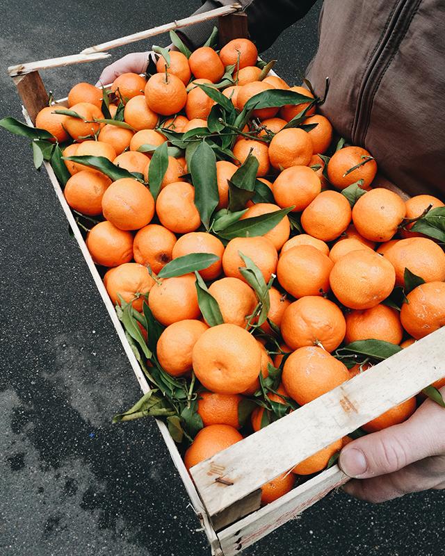 Taranto-clementines