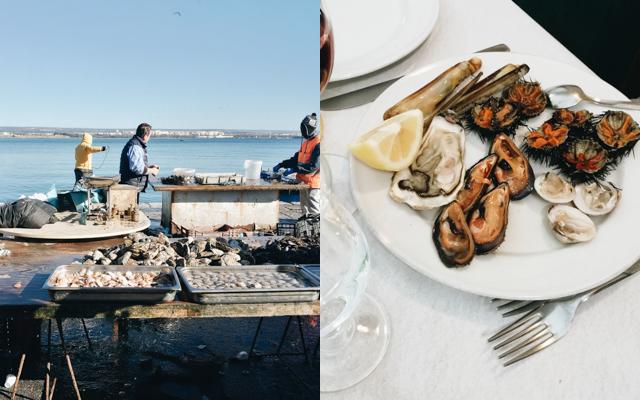Taranto-blog