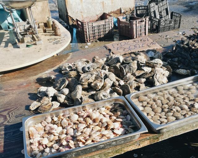 Fish market Taranto