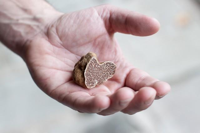 white-truffle-IMG_6458