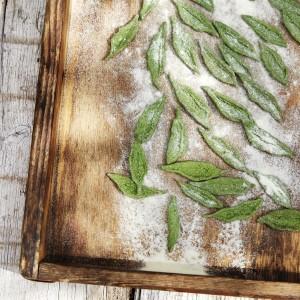 """Olive leaf"" pasta with tomato and mozzarella"