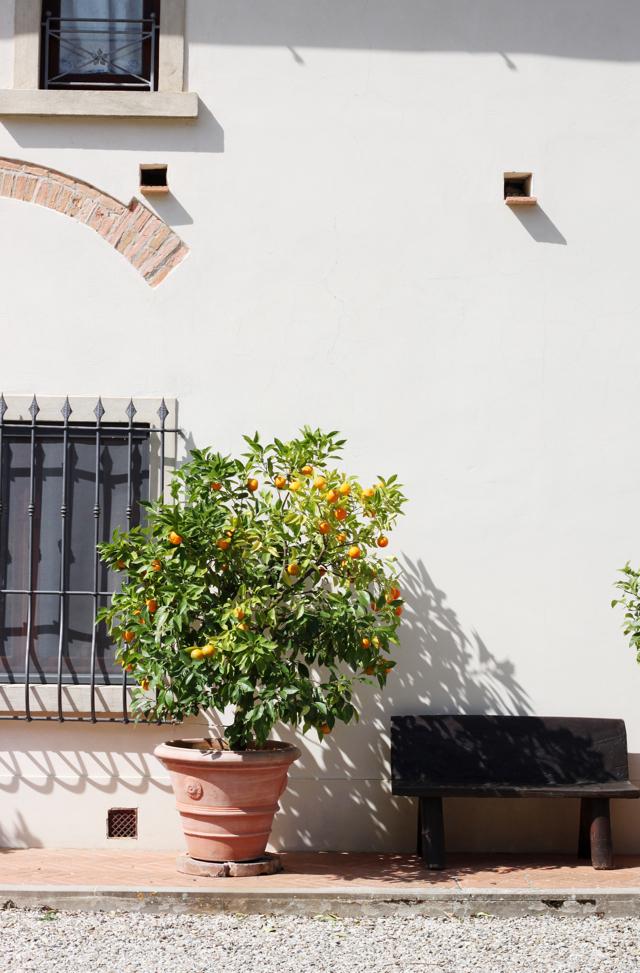 Villa Campestri Tuscany