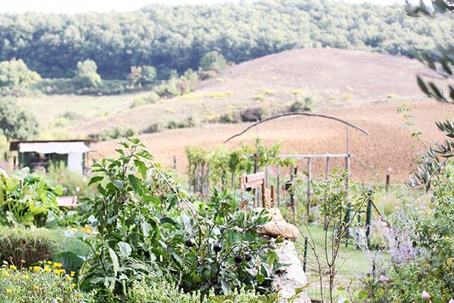 Puscina garden