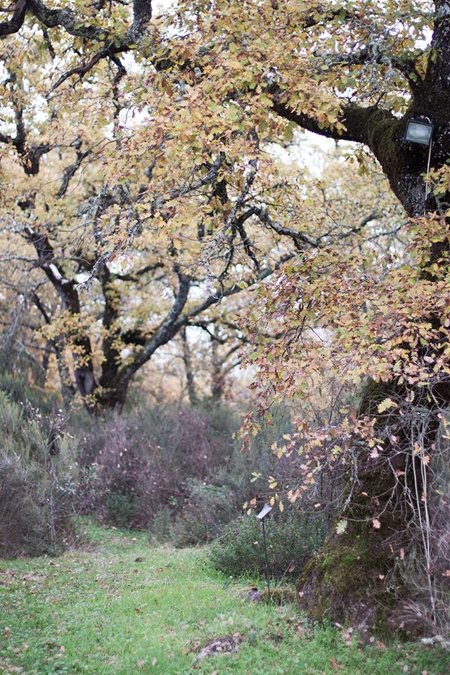 Tuscan Gathering La Selva Giardino del Belvedere