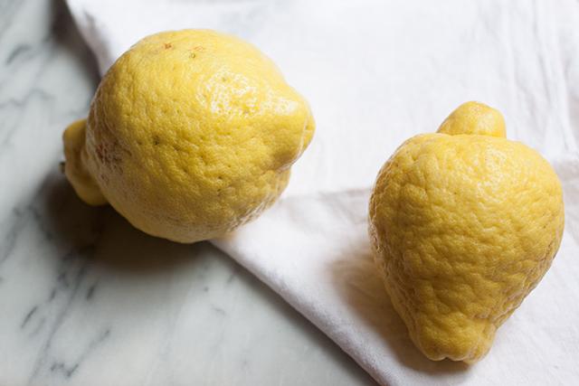 Citron - cedro