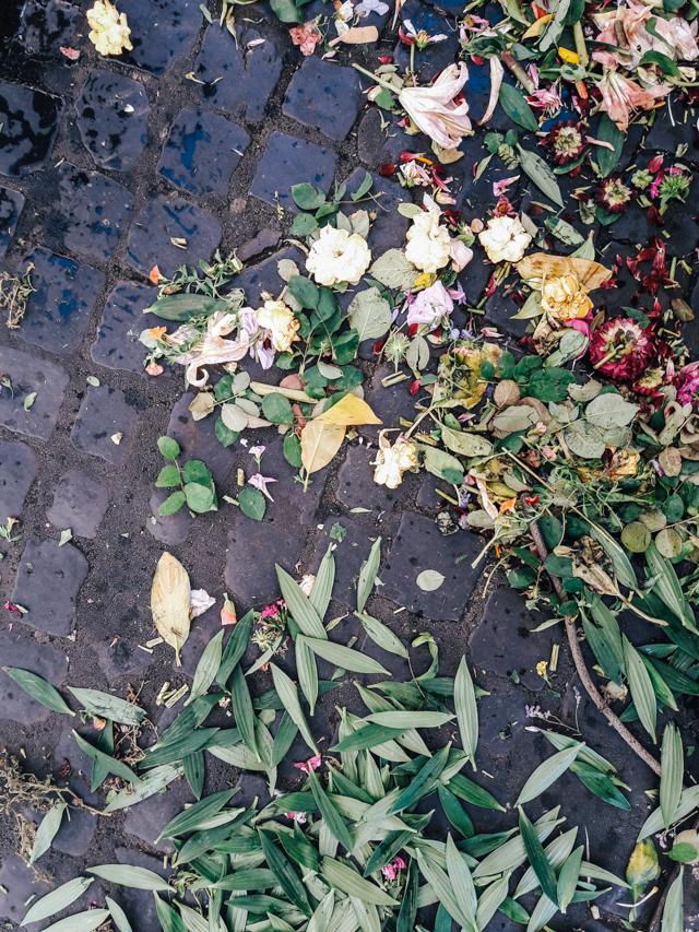 Flower petals Campo dei Fiori