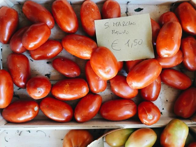 San Marzano tomatoes in Tuscany