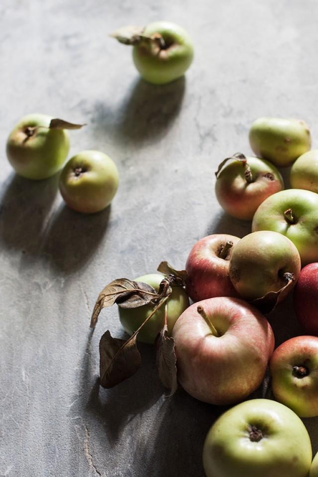 heirloom Francesca apples