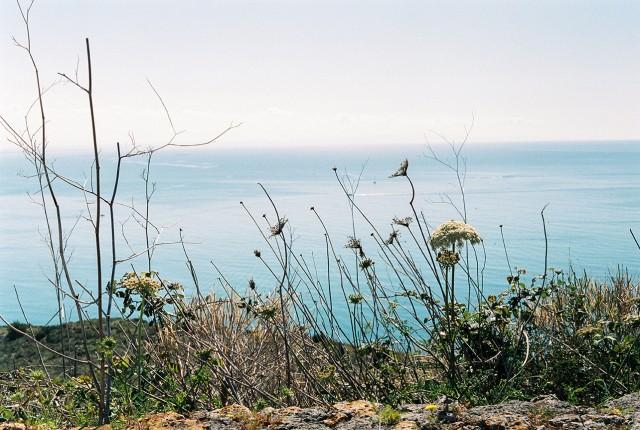 acquacotta-film-photos2