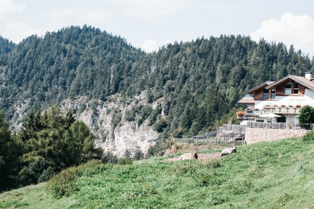 Trento Mountains Fichtenhof